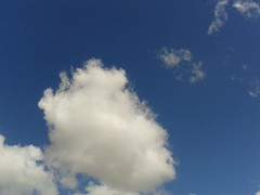 20160618_114220 (eltiemp0Zaragoza) Tags: blanco nube algodn