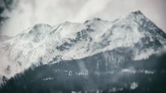 Double-Exposed Mountain Blur (liqube) Tags: winter mountain blur dark landscape blurry glow gloomy outdoor desaturated mountainside dusky doublexposure glowy doubleexposed mountainpeak
