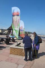 IMG_1932fixing (janohighway) Tags: summer sculpture art design seaside community selection environment choice recycling collective debate teignmouth outdoorart ecoart sculpturetrail devonuk womenartists trail2016