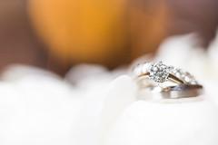 Ring (Irving Photography | irvingphotographydenver.com) Tags: wedding canon prime colorado photographers denver shooters lenses