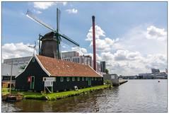 Zaanse Schans de Duyvis molen (voorhammr) Tags: gras zon zaanseschans zaandam molens 2016 vakwerk huisjes blauwelucht jolandakraus