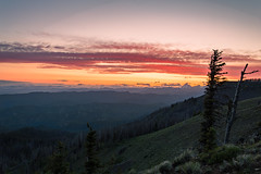 Sunset over the Mountains (JustinMullenPhotography) Tags: trees sunset red sky orange cloud sun mountain mountains tree nature beautiful beauty grass yellow set night clouds landscape outside outdoors landscapes washington amazing colorful pacific northwest wind outdoor wildlife adventure land serene wilderness majestic pnw
