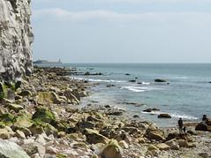 Chalk Cliffs (only lines) Tags: uk chalk kent cliffs englishchannel samphirehoe
