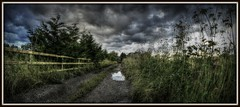 Looking down the lane. (Steve.T.) Tags: sky lines clouds fence landscape puddle countryside nikon framed perspective wideangle essex fisheyelens littlebaddow leadinglines samyang8mmfisheyelens d7200