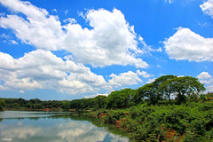My lang thang (CORNER2012) Tags: lighting blue sky lake tree nature water landscape cloudy vietnam