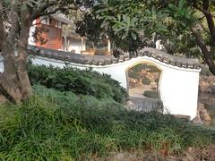(sftrajan) Tags: china garden shanghai   botanicgarden botanischergarten  shanghaibotanicalgarden  shnghi