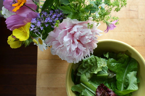 today from the garden
