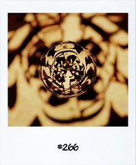 """#DailyPolaroid 20-6-12 #266 • <a style=""""font-size:0.8em;"""" href=""""http://www.flickr.com/photos/47939785@N05/7433835738/"""" target=""""_blank"""">View on Flickr</a>"""