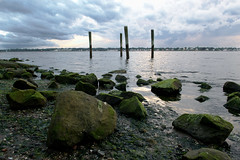 Rocky. (austinrecio) Tags: ocean wood sunset sky seascape seaweed green water clouds evening bay moss nikon rocks wideangle rhodeisland poles lowangle narragansettbay sabinpointpark austinrecio