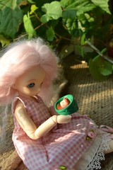 A LTF A Day: Day 2 Favorite Film is Ponyo (Jemjoop Blythe/BJD) Tags: pink fish film flora ns wig mohair miyazaki fairyland ponyo littlefee sweetneat