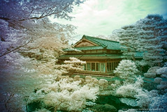 Isuien Garden, Nara, Japan (jev) Tags: leica blue white japan japanesegarden spectrum wide surreal rangefinder super infrared manual nara infra digitalinfrared dominantcolor dominantcolour isuiengarden avenon leicam8 meijiera  walkinggarden leicaimages wwwartqcom kaiyushikiteien