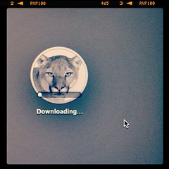 In sfrit! #mountain #lion #osx (Andy Ostafi) Tags: square nashville squareformat iphoneography instagramapp uploaded:by=instagram