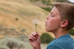 IMG_3024 (rlonas) Tags: family boy plant nature natural seed blow dandelion teen wish wishing