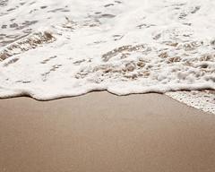 Wild Honey (Melanie Alexandra Photography) Tags: ocean california summer beach sand waves shoreline coastal coastline nautical seafoam sandybeach