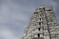 The white Gopuram (Scalino) Tags: india tower temple south sri tamil tamilnadu inde nadu trichy dravidian gopuram tiruchirapalli ranganathaswamy trichinopoly cheesenaan dravidien