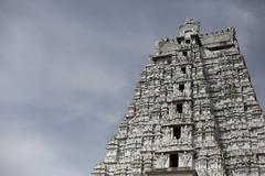 The white Gopuram (Scalino) Tags: india tower temple south sri tamil tamilnadu inde nadu trichy dravidian gopuram tiruchirapalli ranganathaswamy trichinopoly cheesenaan dravidien