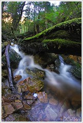 Upper Gads Creek (Damon Colbeck) Tags: green creek canon lens waterfall saturated small falls fisheye 7d 8mm enhanced dlsr canon7d