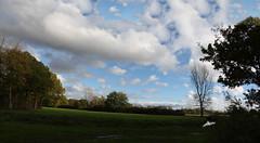 "Pikhakendonkwandelpad 44a/52 ""panorama"" (Raf Degeest Photography) Tags: panorama canon landscape belgium 2012 week44 weekofoctober28 522012 52weeksthe2012edition"