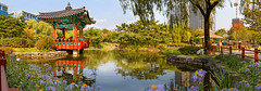 View by the pond (Charn High ISO Low IQ) Tags: park flowers trees panorama green canon eos pond seoul urbannature pavilion southkorea yeouido hugin 600d hangangpark traditionalkorean