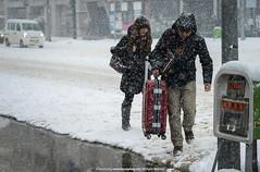 The S**tstorm |  (francisling) Tags: winter snow storm japan subway sapporo minolta sony m  koen alpha 90mm  f4 a7 nakajima   rokkor   ilce7