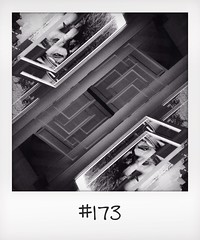 "#DailyPolaroid of 20-3-14 #173 • <a style=""font-size:0.8em;"" href=""http://www.flickr.com/photos/47939785@N05/13678334714/"" target=""_blank"">View on Flickr</a>"