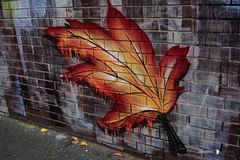 Fitzroy/Collingwood 16-05-16 (Divided Creative) Tags: city autumn urban streetart art wall outdoors graffiti leaf mural paint collingwood bricks fitzroy australia melbourne victoria