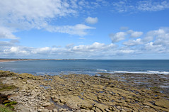 View north from Rocky Island (DavidWF2009) Tags: sea rocks northumberland seatonsluice rockyisland