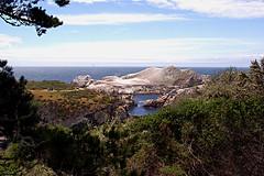 007-point lobos- (danvartanian) Tags: nature landscapes pointlobos