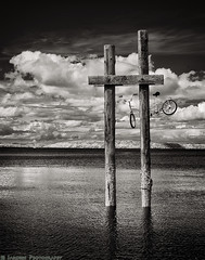 Ride The Bike and Clouds 3 (mjardeen) Tags: sea blackandwhite bw white black texture mamiya water bike way lens landscape ir island pier washington waves outdoor sony salt depthoffield 55mm m42 infrared wa converted pugetsound serene ripples tacoma pilings f18 standard ruston vashon a7ii sekor 720nm lifepixel mamiyasekor55mmf18 landscapesshotinportraitformat niksilverefex a7m2 ilce7m2