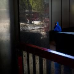 ** (donvucl) Tags: colour reflection london reflections squareformat figure euston eustonstation donvucl olympusem1 blurredandsoftened