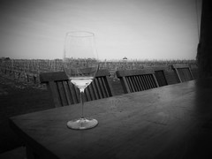 magnifying glass (vfrgk) Tags: blackandwhite bw glass monochrome table vineyard view chairs wine relaxing tranquility serenity pavilion serene tranquil calmness