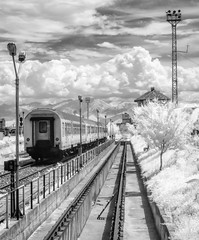 Train (in Station) (DomiKetu) Tags: travel trees blackandwhite bw black monochrome station clouds train ir mono blackwhite railway panasonic romania rails infrared converted sibiu blackwhitephotos 850nm tz10