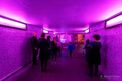 20160616-50-Neither Here nor There at Dark MOFO 2016 (Roger T Wong) Tags: art festival night australia tasmania hobart 2016 sony1635 rogertwong darkmofo railwayroundaboutfountain sel1635z sonya7ii sonyilce7m2 sonyalpha7ii sonyfe1635mmf4zaosscarlzeissvariotessart