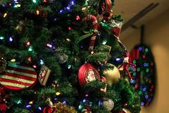 Holiday spirit (Fernanda Pavanello) Tags: christmas usa holiday tree natal canon 50mm lights florida decoration newyear garland waltdisneyworld ef50mmf18ii hotellobby popcenturyresort 600d