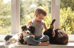 the only way to have a friend is to be one (Jagoda 1410) Tags: friends bunny window childhood animal friendship naturallight bookreading kidsandanimals childrensphotography takenwithlove kidsactingnatural