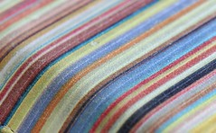 Colourful Stripes (Sa Mu) Tags: macro canon stripes colourful macromondays