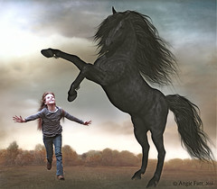 Black Beauty (rubyblossom.) Tags: horse girl book rear jum stallion titles 2016 rubyblossom balckbeauty rubystreasures angiesanimalantics challengeno6