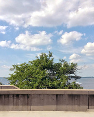 Sky, Water, Tree (_minette) Tags: tree clouds uwmadison madisonwi mendota collegelibrary helencwhitehall