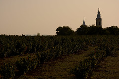 Last glimpse of the village ( V ) Tags: morning church rural countryside vineyard hungary village wine magyarorszag tokaj backlilt