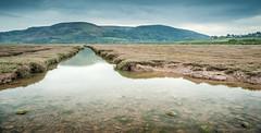 Sparkhayes Marsh River (PKpics1) Tags: water rocks salt marsh pollock saltmarsh exmoor sparkhayes