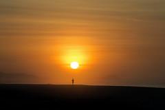 Run for the Sun (David Noll Photography) Tags: orange run runner beach sands cabosanlucas cabo sanjosedelcabo morningrun morning sand justrun