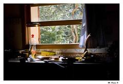 Abans d'escurar _ Before washing the dishes (Miquel Pieras) Tags: primavera sol window ventana spring finestra llum miquelpieras lavarlosplatos rentarelsplats escurar
