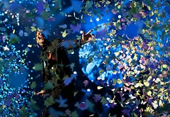 Coldplay Vancouver 2012 Rogers Arena (spacehindu) Tags: chris vancouver martin coldplay arena anil rogers mylo sharma spacehindu xyloto
