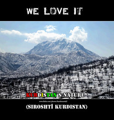 We love it Kurdistan (Kurdistan Photo ) Tags: love nature peace iran syria airlines turkish turk kurdistan barzani kurd newroz warplanes peshmerga peshmerge  iraqturkey