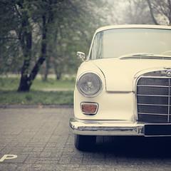 Meet Benz (Morphicx) Tags: beautiful dutch car bokeh parking paula vehicle canon5d whitecar canon50mmf14 5365 mercedesbenz200d morphicx