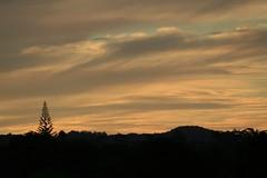 Sunset Auckland (Zelda Wynn) Tags: trees sunset art clouds skyscape pastel ranges apricot cloudscape waitakere troposphere ©zeldawynn zeldawynnphotography