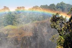 Victoria Falls_2012 05 24_1709 (HBarrison) Tags: africa hbarrison harveybarrison tauck victoriafalls zimbabwe zambeziriver mosioatunya