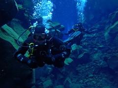 Diving Silfra 1