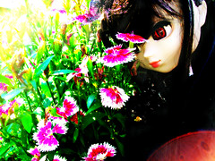 ~Living on This Charming Life (~LadyDeath~) Tags: flowers light cute grass outdoors pretty gothic lolita demon pullip stica reznya