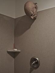 The Showerhead (ricko) Tags: deleteme5 deleteme8 deleteme deleteme2 deleteme3 deleteme4 deleteme6 deleteme9 deleteme7 bathroom shower soap saveme mask head deleteme10 faucet razor soapdish mdpd12 mdpd1206